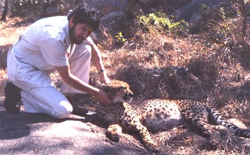David with cheetah